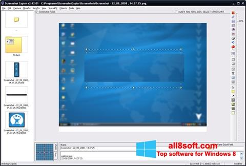 Снимка на екрана ScreenShot за Windows 8