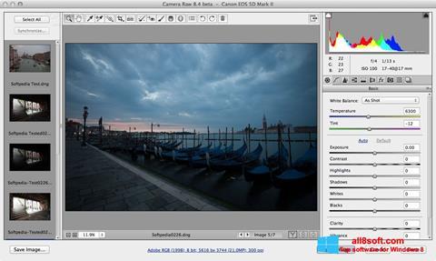 Снимка на екрана Adobe Camera Raw за Windows 8