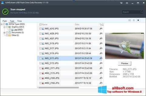 Снимка на екрана USB Flash Drive Recovery за Windows 8
