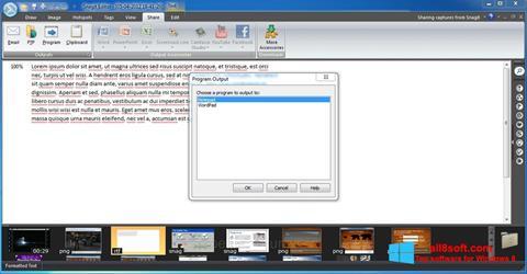 Снимка на екрана Snagit за Windows 8