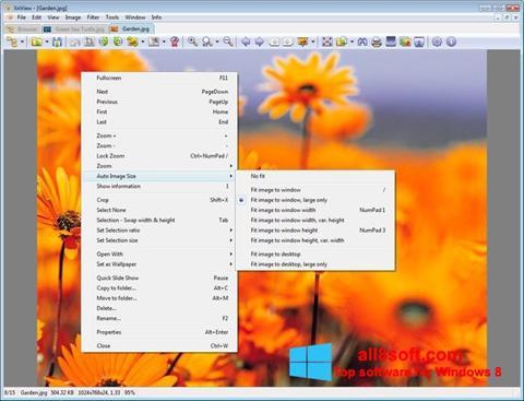 Снимка на екрана XnView за Windows 8