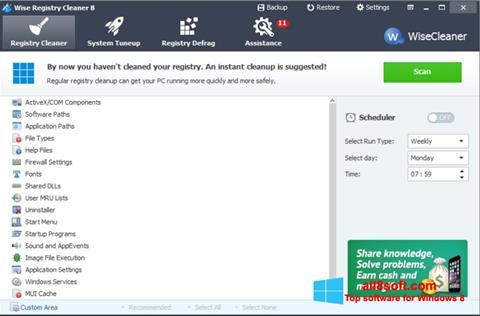 Снимка на екрана Wise Registry Cleaner за Windows 8