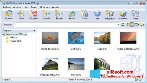 Снимка на екрана WinZip за Windows 8