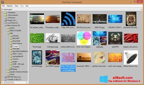 Снимка на екрана IrfanView за Windows 8