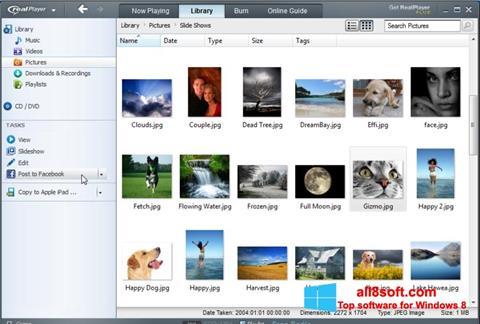 Снимка на екрана RealPlayer за Windows 8